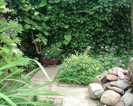 Eigen Tuin Ontwerpen : Ontwerp uw eigen tuin zelf uw tuin ontwerpen deel iii
