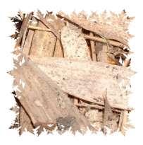 Thuiscomposteren: Wat kan of mag je wel of niet composteren?(1490912397)