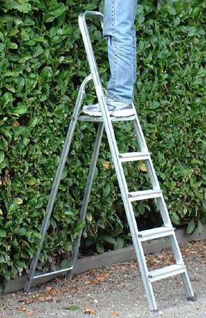 Fruitladder hout